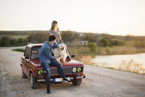 young-family-road-trip-with-their-dog_23-2148195696